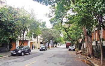 Av. Irerê no Planalto Paulista/SP