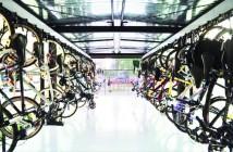 Bici-LgBatata_499x325