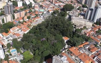 Parque Modernista é uma das poucas áreas verdes remanescentes no distrito Vila Mariana