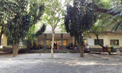 escola municipal de iniciação artística